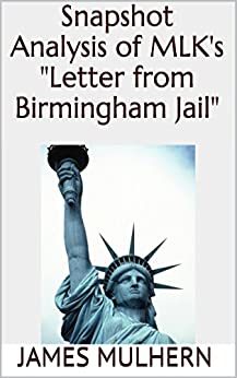letter from birmingham jail an analysis Dr king wrote the letter from birmingham jail while he was in solitary  confinement after being arrested for protesting segregation laws in.