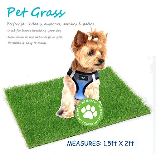 Deseados Artificial Grass Pet Turf Synthetic Grass Dog Potty Training Pad Entrance Way Porch Grass Doormat Fake Grass Welcome Floor Door Mats, 1.5ft X 2ft ()