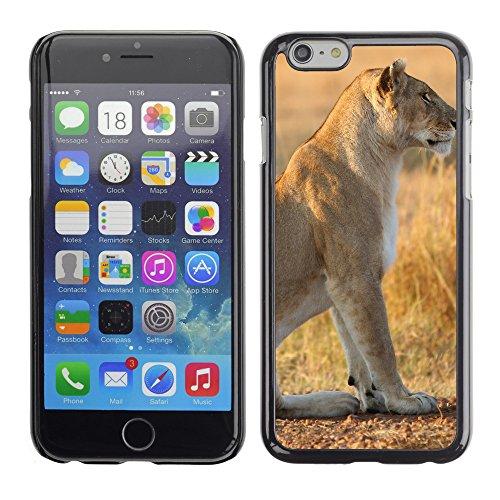"Premio Sottile Slim Cassa Custodia Case Cover Shell // V00003587 lionne sur l'herbe jaune // Apple iPhone 6 6S 6G 4.7"""