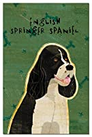 Tree-Free Greetings Eco-Notes Notecard Set, 4 x 6 Inches, 12-count Notecards with Envelopes, Black and White English Springer Spaniel (64997)