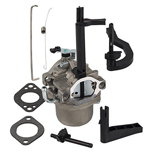 HIFROM Carburetor for Briggs & Stratton 591378 796321 696132 696133 796322 699958 697351 699966 698455 Snowblower Generator Carb