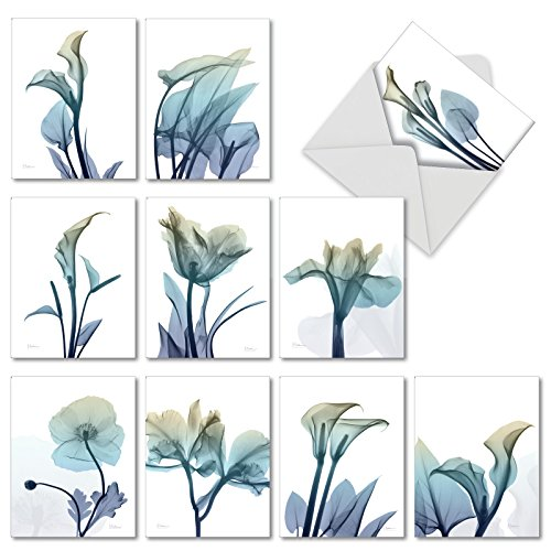 Blooming Expressions - Box of 10 Inspirational Blank Cards with Envelopes (4 x 5.12 Inch) - Watercolor Flowers Assorted Note Cards for Women, Mom - All Occasion Greeting Notecards AM6221OCB-B1x10
