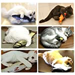 Cat toys with catnip Malier 3 Pack Catnip Toys for Cats Fish Catnip Toys Cat... [tag]