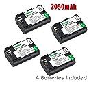 Kastar Battery (4-Pack) for Canon LP-E6, LP-E6N, LC-E6 and EOS 60D, EOS 70D, EOS 5D II, EOS 5D III, EOS 5DS, EOS 5DS R, EOS 6D, EOS 7D Cameras, BG-E14, BG-E13, BG-E11, BG-E9, BG-E7, BG-E6 Grips