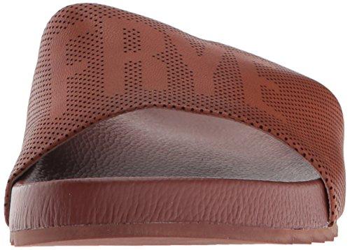 Cognac Lola Sneaker Perf Frye Logo Women's Slid Y5710qw