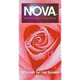 Nova: Mystery of the Senses Smell
