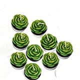 Succulent Cactus Candles Set 12 Pack,JoeStar Handmade Simulation Romantic Tealight Candles Home Decoration Craft Candles Decorative for Party Birthday Wedding