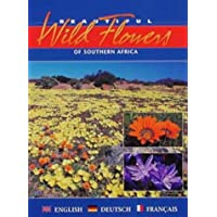 Beautiful Wild Flowers of Southern Africa: An Illustrated Traveller's Companion