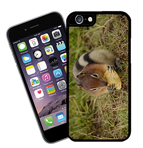 Chipmunk 01 iPhone case - This cover will fit Apple model iPhone 5 and 5s (not 5c) - By Eclipse Gift Ideas