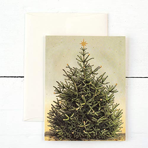 - Hester & Cook Boxed Set Greeting Cards Set of 6, Blank Inside, Holiday Winter Merry Christmas Tree
