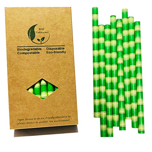 10mm Extra Wide Bamboo Jumbo Paper Straws for Smoothies, Milkshakes(32 Paper Box)