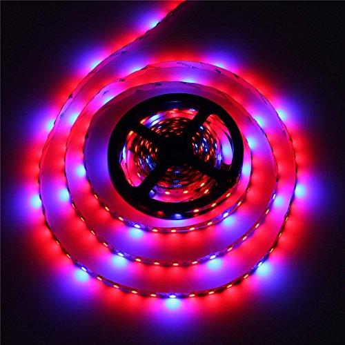 AUDEW 9.8ft 4:1 5050 Grow LED Strip Light Aquarium Greenhouse Hydroponic Plant 12V 12W(3M)