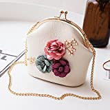 Women Retro Flower Handbag Chain Strap Shoulder Crossbody Bag Small Purse Wallets Clutch (Beige)