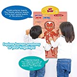 BEST LEARNING i-Poster My Body - Interactive