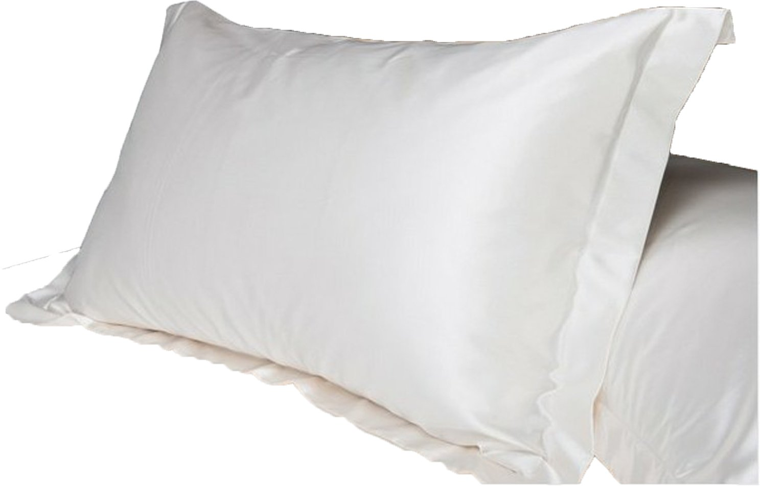 2pc New Queen/Standard Silk~y Satin Pillow Case Multiple Colors (white) by Hotportgift