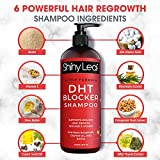 DHT Blocker Anti-Hair Loss Shampoo With Biotin, for Men & Women, Sulfate Free, Natural DHT Blocking Shampoo for Hair Growth, For Thinning Hair, Hair Fall and Hair Loss Prevention, Active Formula 16 Oz