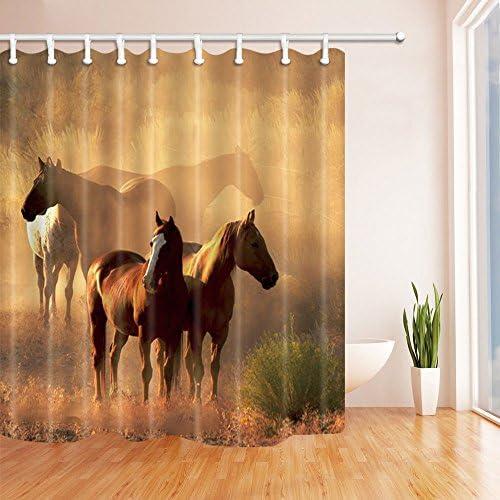 Three Horses Stand on the Prairie Waterproof Shower Curtain Rug Mat /& 12 Hooks