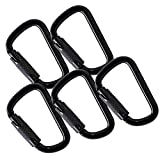 Fusion Climb Tacoma Steel Auto Lock D-Shaped with Key Nose Carabiner 5-Pack