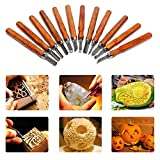 Wood Carving Tools Kit, Including 12 Pieces Professional Woodcut Chisels Knives,DIY Art Craft Clay Carpentry Beginners