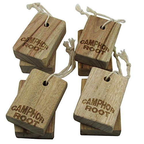 moth-protection-cinnamomun-camphcra-old-root-blocks-moth-away-for-closet-storage-bags-long-term-stor