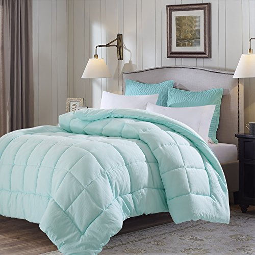 EVOLIVE All Season Pre Washed Soft Microfiber White Goose Down Alternative Comforter (Mint, Full/Queen)