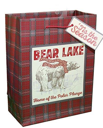 Tartan Gift Bags (Paper Images Rustic Christmas Medium Gift Bag (Tartan Plaid))