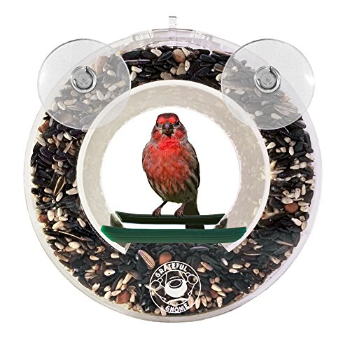 Grateful Gnome - Double Circular Window Bird Feeder - Clear Acrylic House for Small Wild Birds Like Finch and Chickadees – Virtually Squirrel Proof feeder for Backyard Window (Circular Bird Feeder)