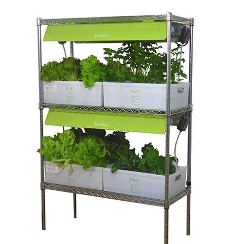植物栽培用LED付き リビングファーム 大型水耕栽培器 RHW600-6 高輝度LED600搭載 32株育成 B07C5716JD