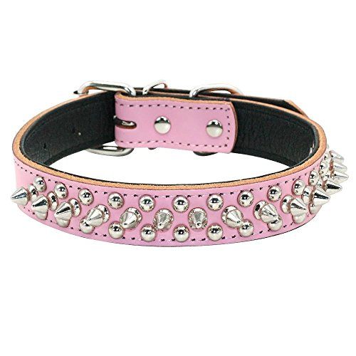 Didog Leather Padded Spiked Studded Dog Collar Small Medium Dogs -Pink 9-13