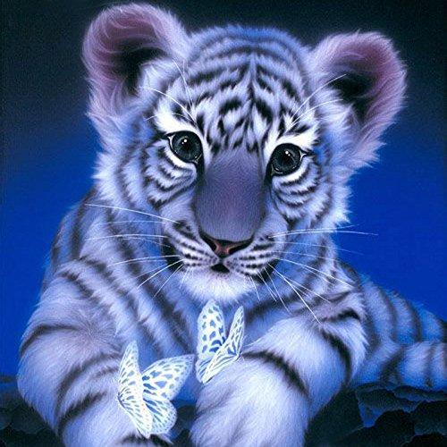 (Cinhent Diamond Painting, DIY 5D Drill Cross Stitch Kits Crystal Rhinestone Decor Embroidery Arts Craft, School/Bar / Hotel Wall Arts Home Decor Gift, 20 × 20CM, White Tiger Catching)