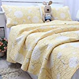 FADFAY Queen Size Beige Flowers Comforter Sets European Rustic Patchwork Quilts Girls Summer Floral Coverlets Cotton Quilted Bedspread 3Pcs