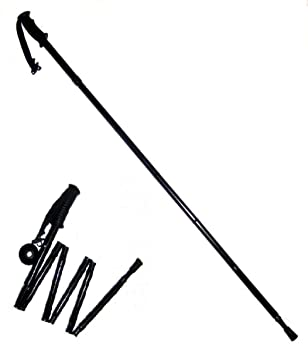 Image result for sketch of trekking stick without company logo