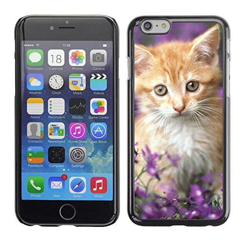 "Premio Sottile Slim Cassa Custodia Case Cover Shell // V00003083 chat // Apple iPhone 6 6S 6G 4.7"""
