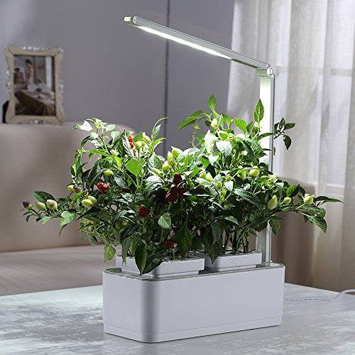 Indoor Herb Garden, AIBIS Hydroponics Watering Growing System, Organic Home Herbs Gardening Kit with Led Grow Light, Not Contain Seeds, Best for Flower and Vegetable like Thyme, Mint and Tomato(White) by AIBIS (Image #6)