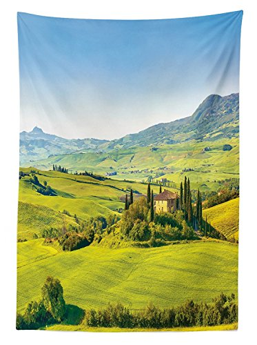 vipsung Tuscan Decor Tablecloth Rural Landscape Cypresses Along The Path to an Ancient Vineyard Farm House Dining Room Kitchen Rectangular Table ()