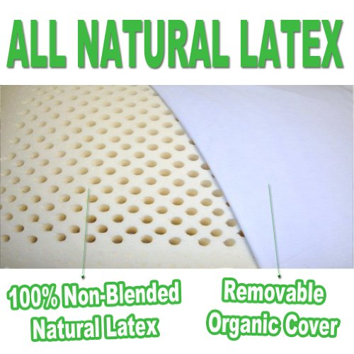 2-Pack All Natural Latex Pillow with Organic Cotton Washable Outer Covering by OrganicTextiles