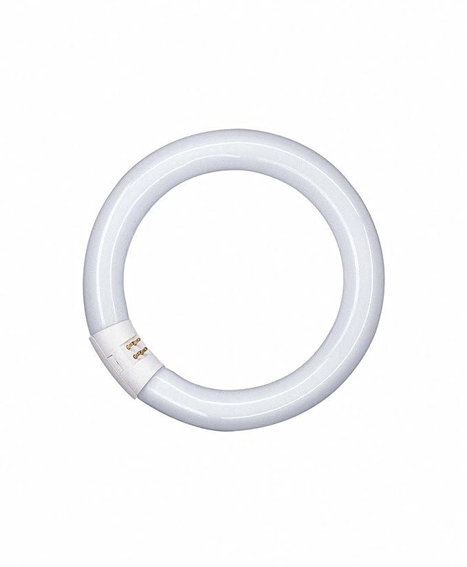 Osram LUMILUX T9 C Fluorescent Tube 32 W GR10q Cool White