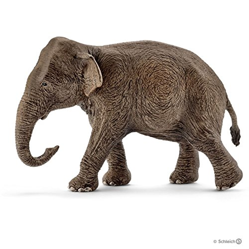 Schleich North America Female Asian Elephant Toy Figure ()