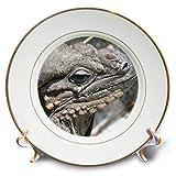 3dRose Susans Zoo Crew Animal - Rhinocerous Iguana Lizard Animal Head - 8 inch Porcelain Plate (cp_294878_1)