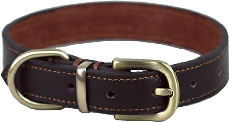 12 Handmade Dark Chocolate Brown Little Dog Collar Thin Biothane Dog Collars 12mm Waterproof Small Dog Collar- Vegan Leather