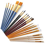 Ajcoflt Conjunto de pincéis de pintura de 25 peças, kit de iniciante, inclui pincéis de cabelo Taklon/cerdas/c
