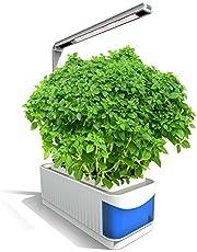 مجموعة زراعية للأعشاب الداخلية الذكية متعددة الوظائف من ماينستاي نظام النمو المائي مع ضوء ليد نبات ينمو التيار المتردد