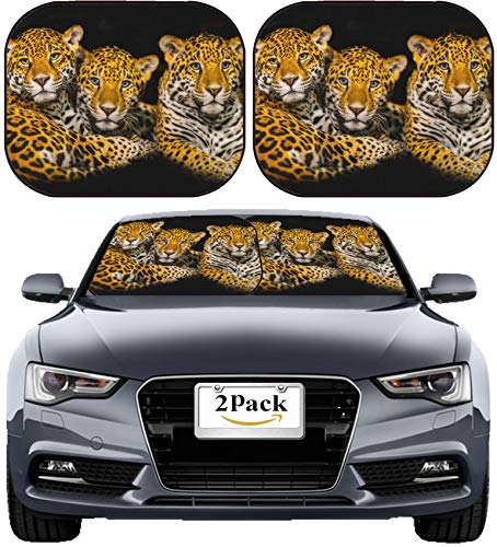 MSD Car Sun Shade Windshield Sunshade Universal Fit 2 Pack, Block Sun Glare, UV and Heat, Protect Car Interior, Image ID: 23401160 Two Young Jaguars and Their Mother