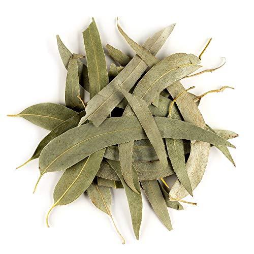 Eucalyptus Organic Loose Tea Leaves - Soft and throat coating - Blackbutt herb 50g 1.76 Ounce