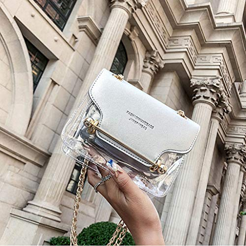 Argenté À Sac Bandoulière Fashion Frange Portefeuille Messenger Main Transparent Lady Carré qvpBwwxS7
