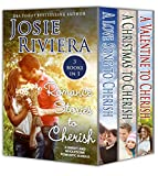 Romance Stories To Cherish: A Sweet And Wholesome Christian Novella Book Bundle