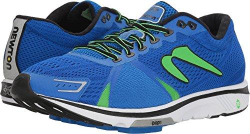 Newton Running Men's Gravity VI Royal Blue/Lime Athletic Shoe For Sale