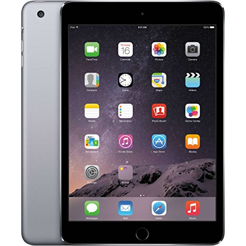 Apple iPad Mini 4-16GB Wifi Space Grey (Renewed) (Apple Ipad Wifi 16 Gb)