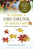 Is there a  Dry Drunk in your life/: And other unsettling questions….and answers