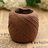 1pcs 20m Color Raffia Paper Ribbon Decorating Flower Gift Craft Scrapbook Wrapping (Coffee) by Pinez